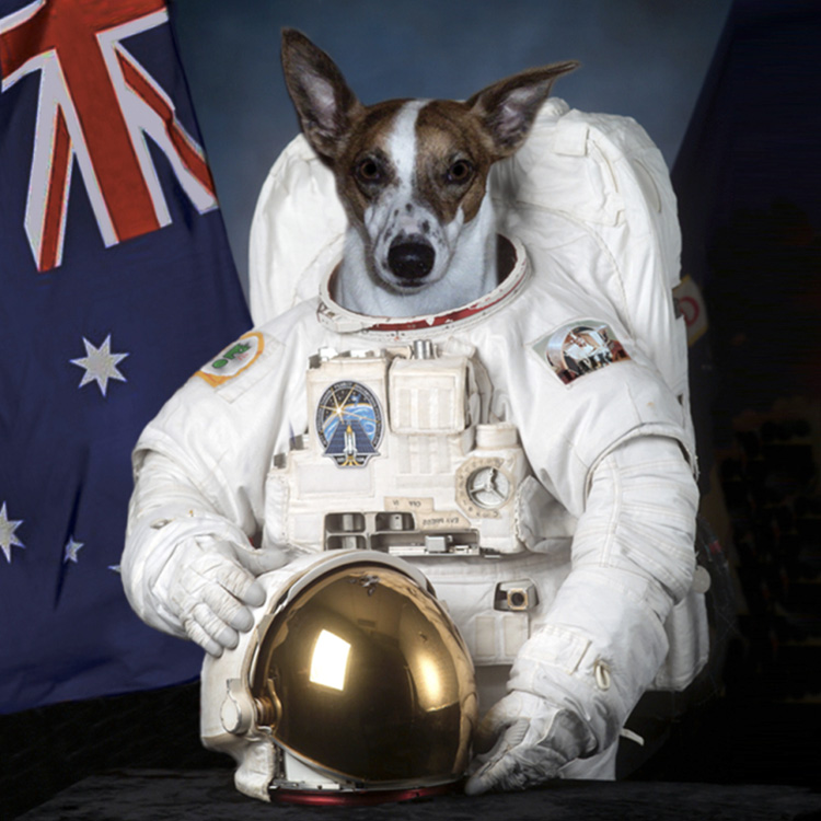 First-Dog-on-the-Moon